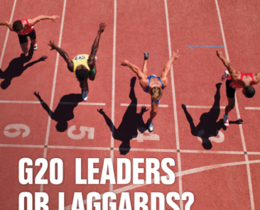 G20 Laggards or leaders